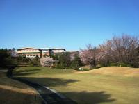 20100411sakura-4.JPG