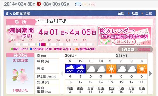 sakura20140330.JPG